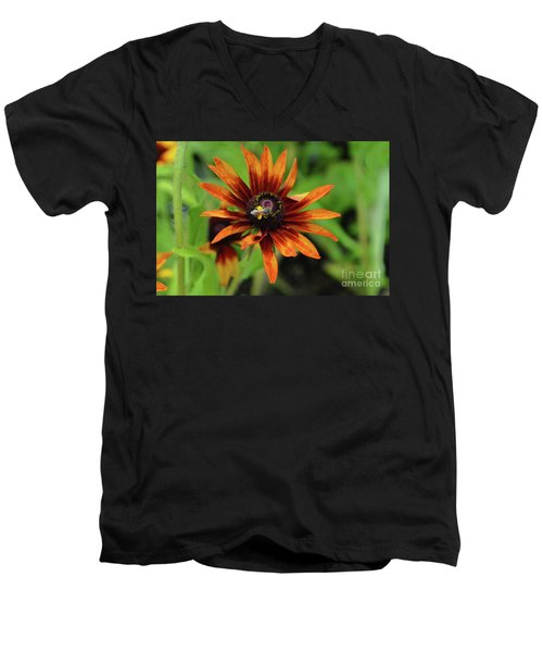 Cone Flower Men's V-Neck T-Shirt
