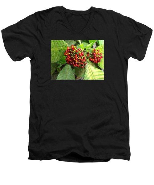 Costa Rican Berries Men's V-Neck T-Shirt