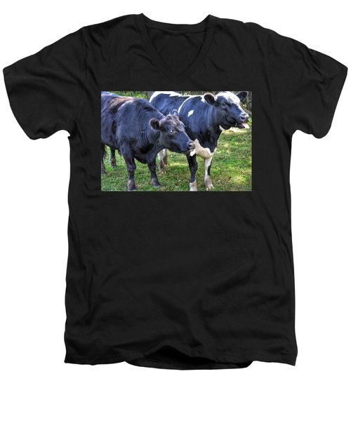 Cows Sticking Out Tongues Men's V-Neck T-Shirt