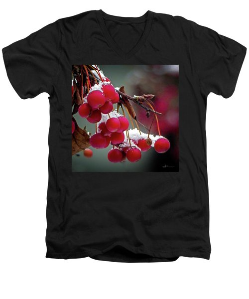 Crab Apples Snow Men's V-Neck T-Shirt