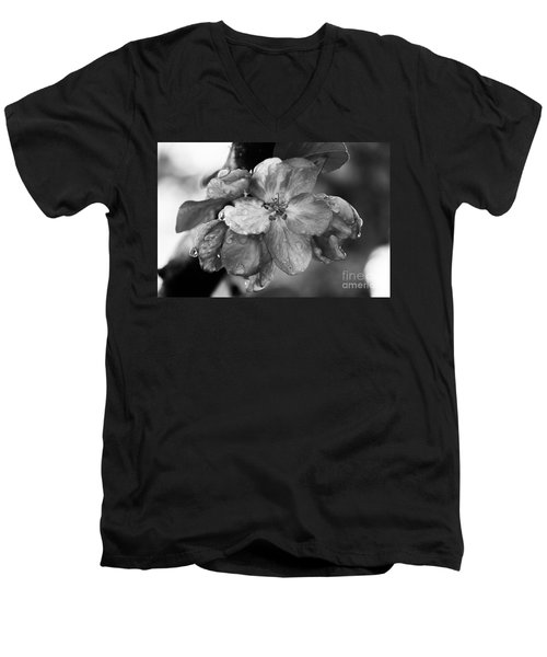 Crabapple Blossom In Rain Men's V-Neck T-Shirt