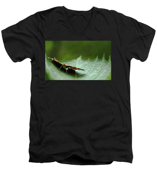 Men's V-Neck T-Shirt featuring the photograph Cradled Painted Lady by Debbie Oppermann