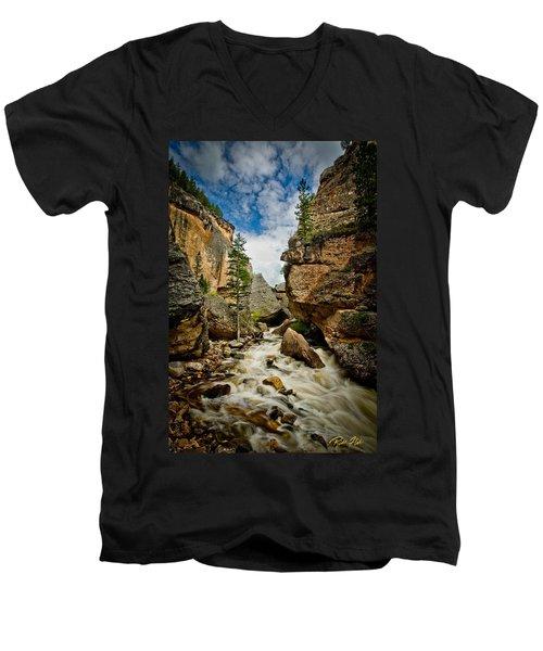 Crazy Woman Canyon Men's V-Neck T-Shirt