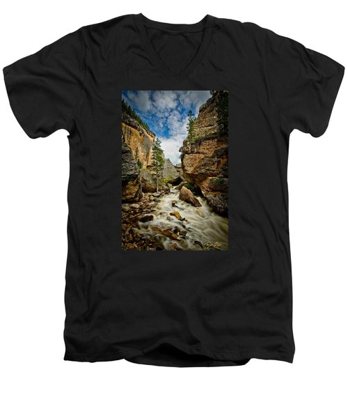 Crazy Woman Canyon Men's V-Neck T-Shirt