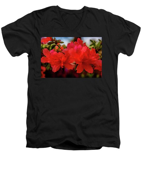 Crimson Lights Men's V-Neck T-Shirt