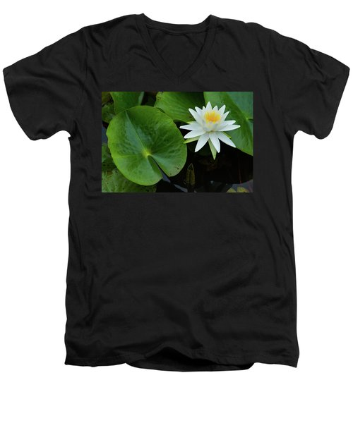 Crisp White And Yellow Lily Men's V-Neck T-Shirt
