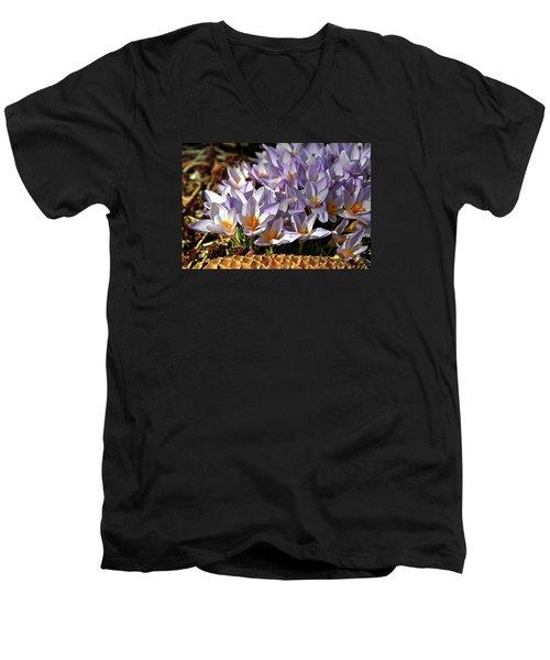 Crocuses Serenade Men's V-Neck T-Shirt