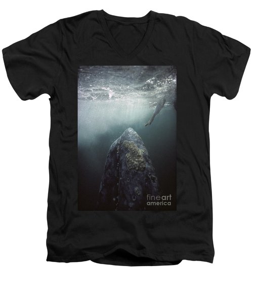 Curious Gray Whale And Tourist Men's V-Neck T-Shirt