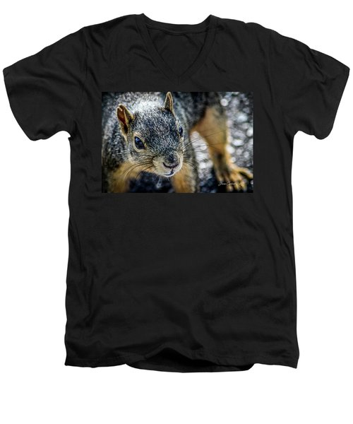Men's V-Neck T-Shirt featuring the photograph Curious Squirrel by Joann Copeland-Paul