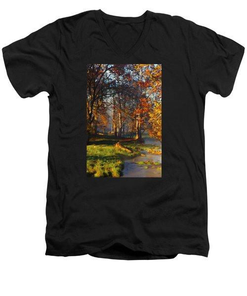 Curry Stream Fall Men's V-Neck T-Shirt