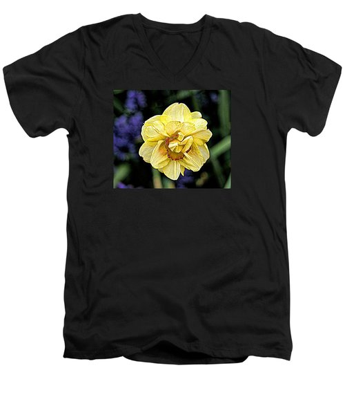Men's V-Neck T-Shirt featuring the photograph Daffodil Dallas Arboretum by Diana Mary Sharpton