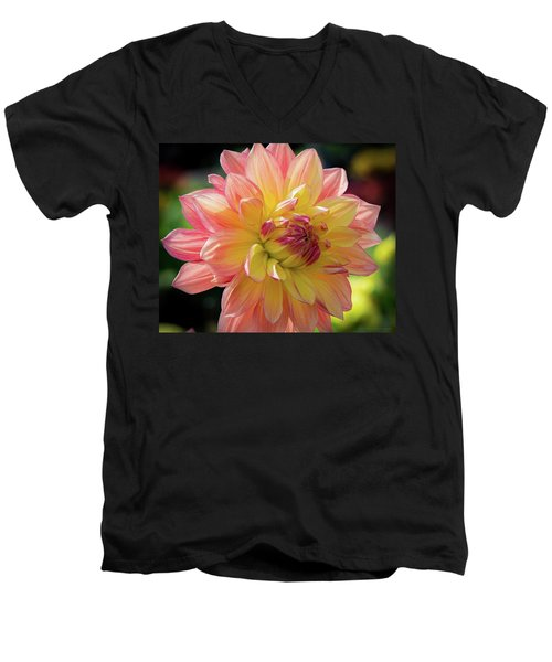 Men's V-Neck T-Shirt featuring the photograph Dahlia In The Sunshine by Phil Abrams