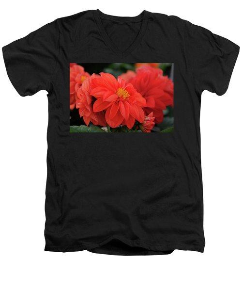 Dahlia Bloomer Men's V-Neck T-Shirt by Ronda Ryan