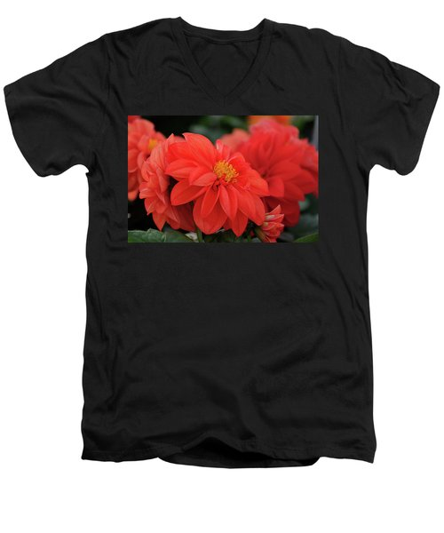 Dahlia Bloomer Men's V-Neck T-Shirt