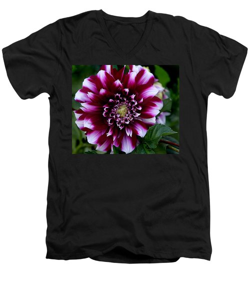 Dahlia Men's V-Neck T-Shirt by Denise Romano