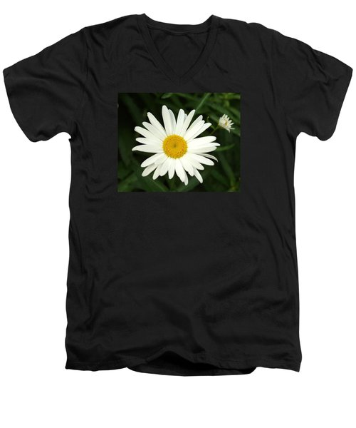 Men's V-Neck T-Shirt featuring the photograph Daisy Days by Carol Sweetwood