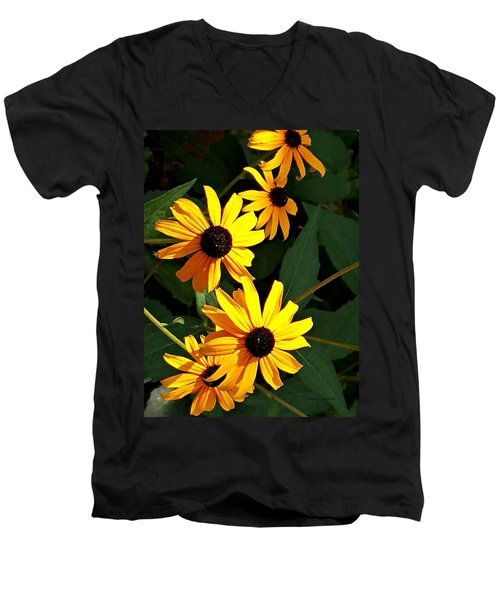Daisy Row Men's V-Neck T-Shirt