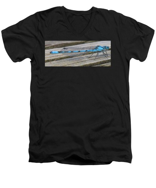 Damselfly Men's V-Neck T-Shirt by Darren Carpenter