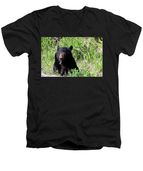 Dandelion Bear Men's V-Neck T-Shirt