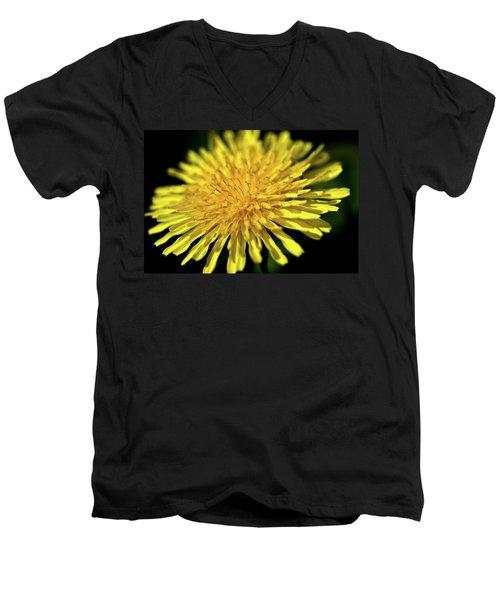 Dandelion Flower Men's V-Neck T-Shirt