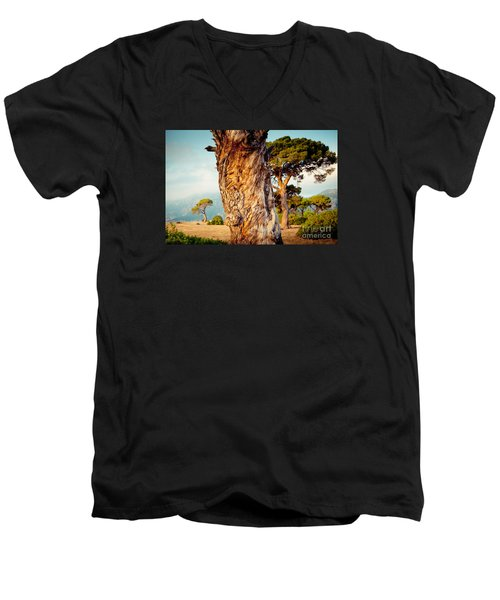 Dead Tree And Forest  Men's V-Neck T-Shirt