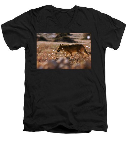 Death Valley Coyote And Flowers Men's V-Neck T-Shirt by Daniel Woodrum
