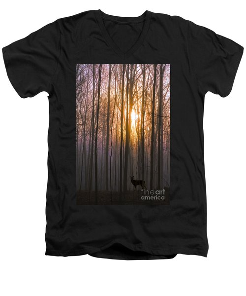 Deer In The Forest At Sunrise Men's V-Neck T-Shirt by Diane Diederich