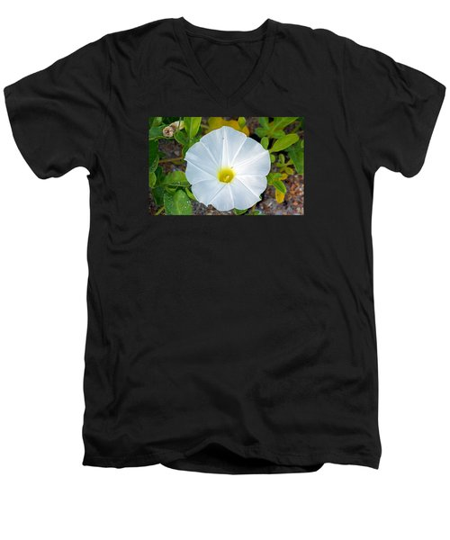 Delicate Beach Flower Men's V-Neck T-Shirt by Kenneth Albin