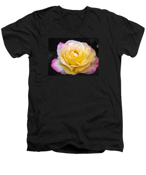 Delightful Blushing Rose  Men's V-Neck T-Shirt