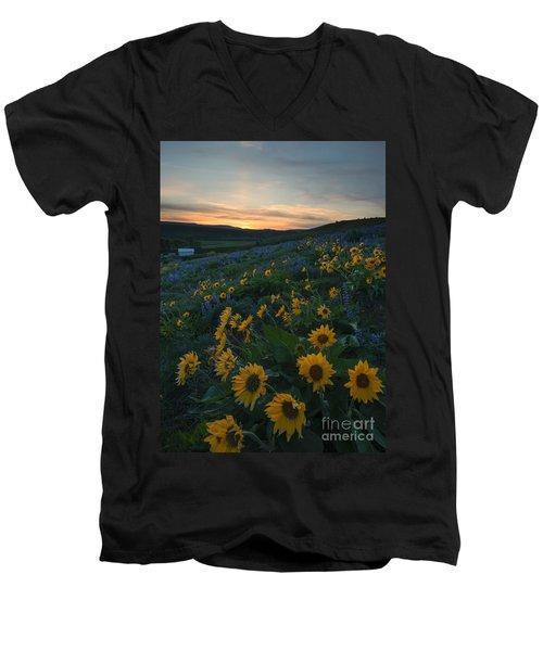 Desert Gold Men's V-Neck T-Shirt