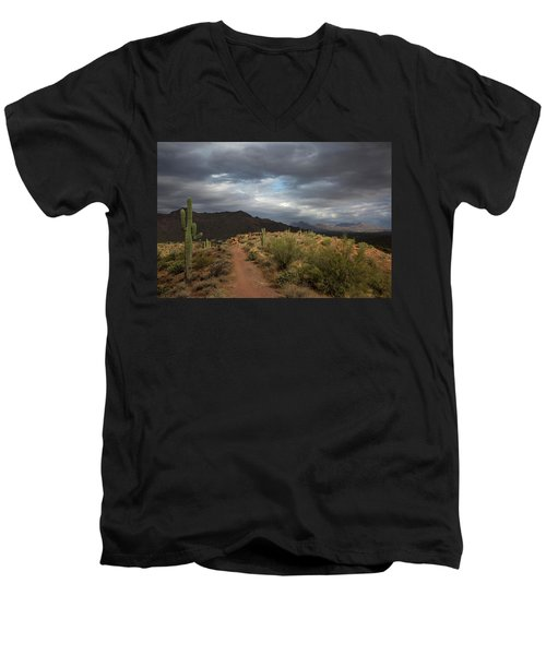 Desert Light And Beauty Men's V-Neck T-Shirt by Sue Cullumber