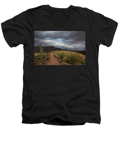 Desert Light And Beauty Men's V-Neck T-Shirt