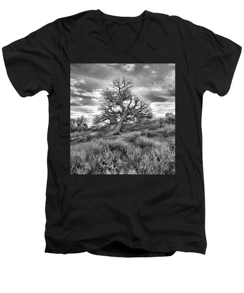 Devils Canyon Tree Men's V-Neck T-Shirt