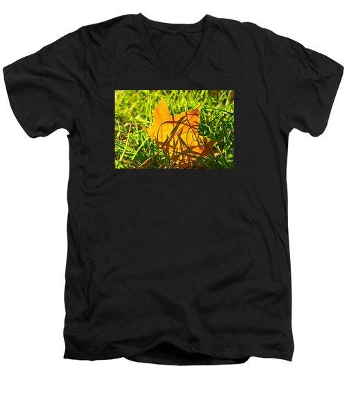 Different Level Men's V-Neck T-Shirt