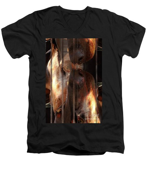 Doberman Pincher Men's V-Neck T-Shirt by Liane Wright
