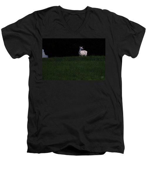 Doe, A Deer Men's V-Neck T-Shirt
