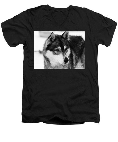 Dog - Monochrome 3 Men's V-Neck T-Shirt
