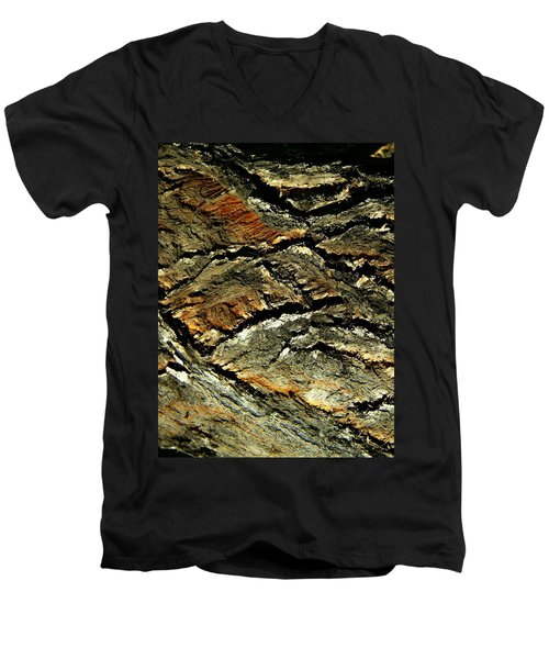 Men's V-Neck T-Shirt featuring the photograph Down In The Valley by Lenore Senior
