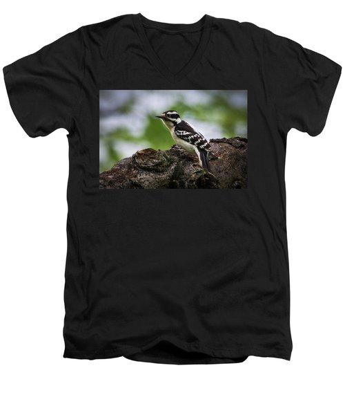 Downy Woodpecker Men's V-Neck T-Shirt