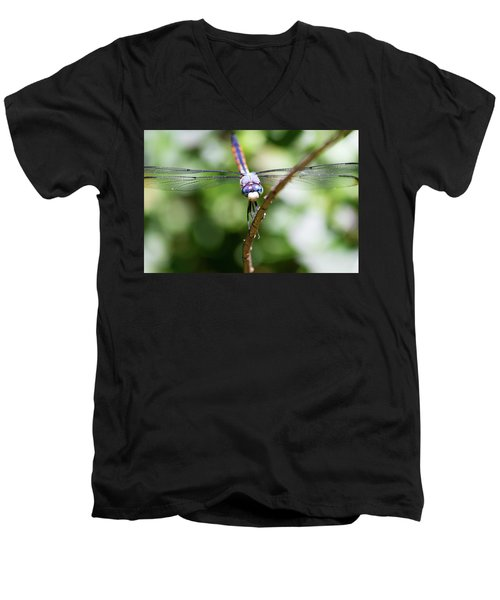Dragonfly Watching Men's V-Neck T-Shirt