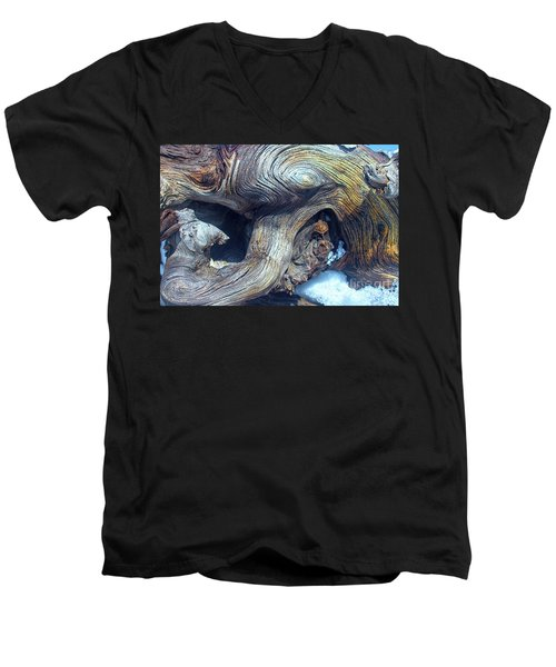 Driftwood Swirls Men's V-Neck T-Shirt
