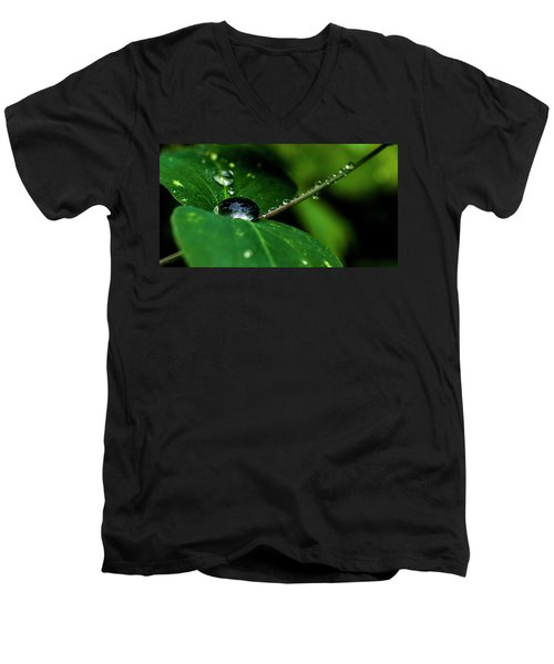 Men's V-Neck T-Shirt featuring the photograph Droplets On Stem And Leaves by Darcy Michaelchuk