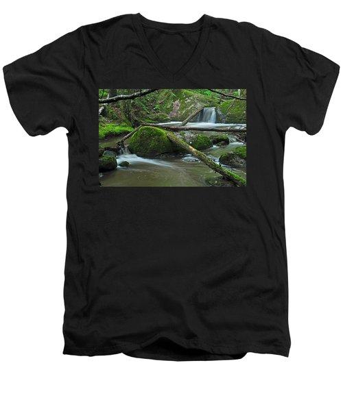 Dual Falls Men's V-Neck T-Shirt by Glenn Gordon