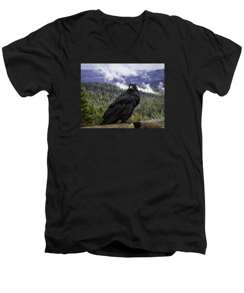 Dunraven Raven Men's V-Neck T-Shirt