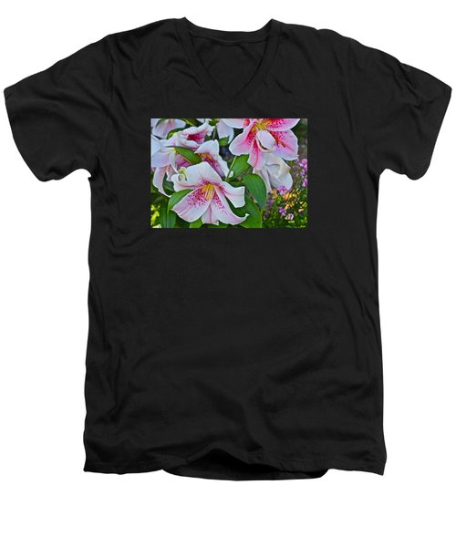 Early August Tumble Of Lilies Men's V-Neck T-Shirt by Janis Nussbaum Senungetuk