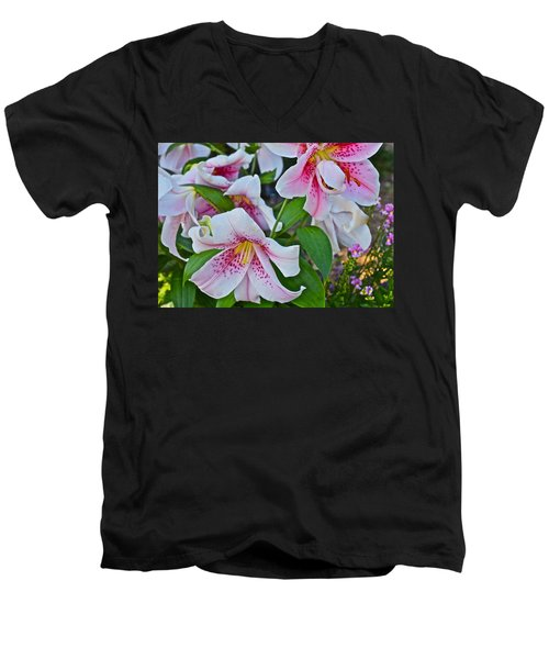 Early August Tumble Of Lilies Men's V-Neck T-Shirt