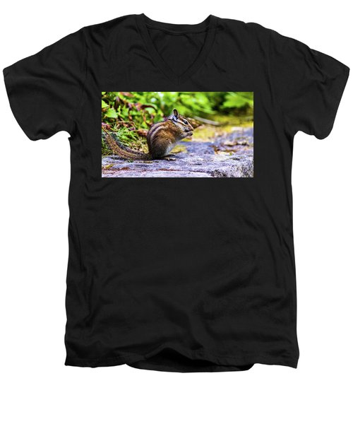 Men's V-Neck T-Shirt featuring the photograph Eating Chipmunk by Jonny D