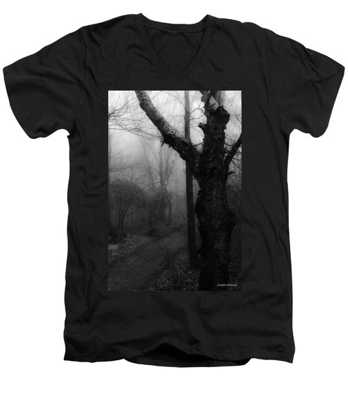 Eerie Stillness Men's V-Neck T-Shirt