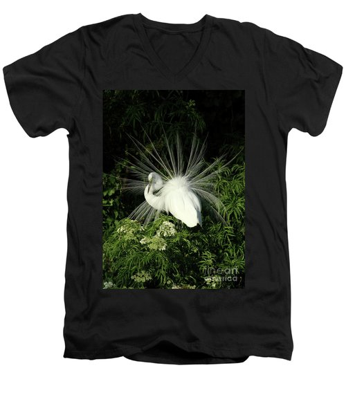 Egret Fan Dancer Men's V-Neck T-Shirt
