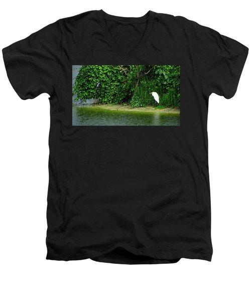 Egret Wakodahatchee Florida Wetlands Men's V-Neck T-Shirt